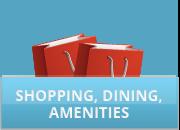 pv_shopping