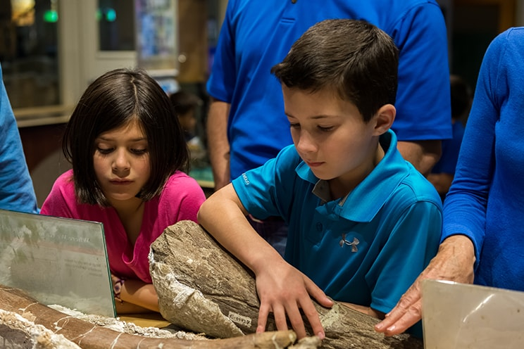Preschool Science Series Kids and Fossils