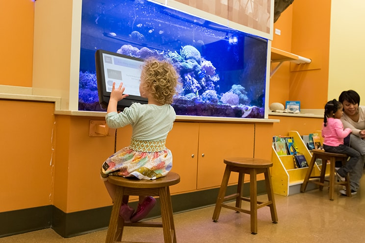 Girl playing in front of aquarium.