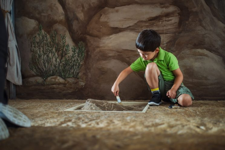 Boy digging in Ecology & Environments.