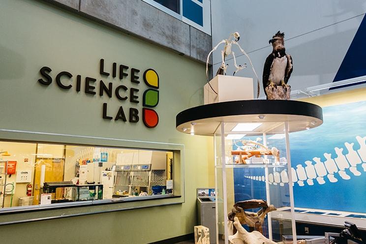 Life Science Lab
