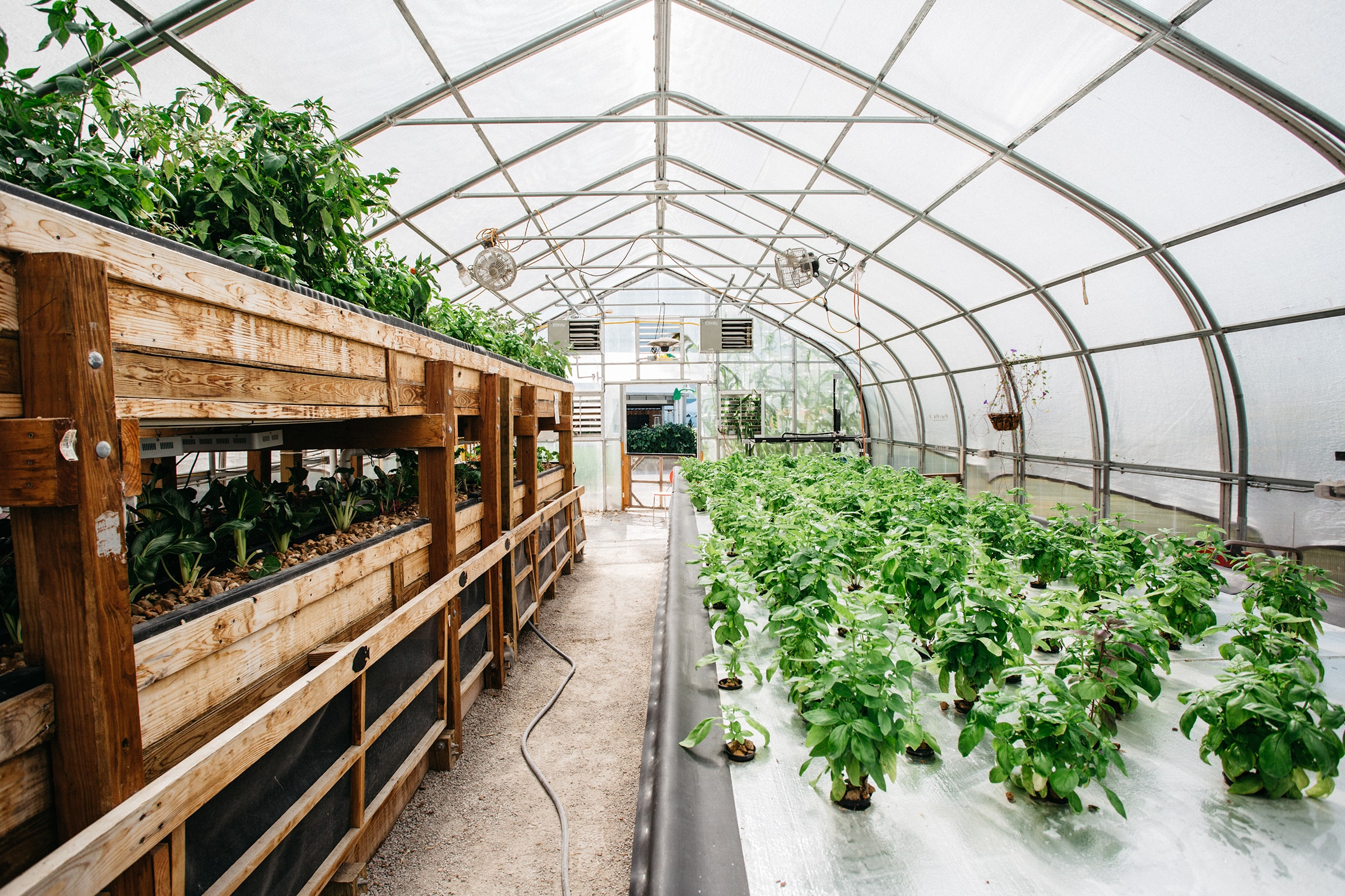 GROW greenhouse