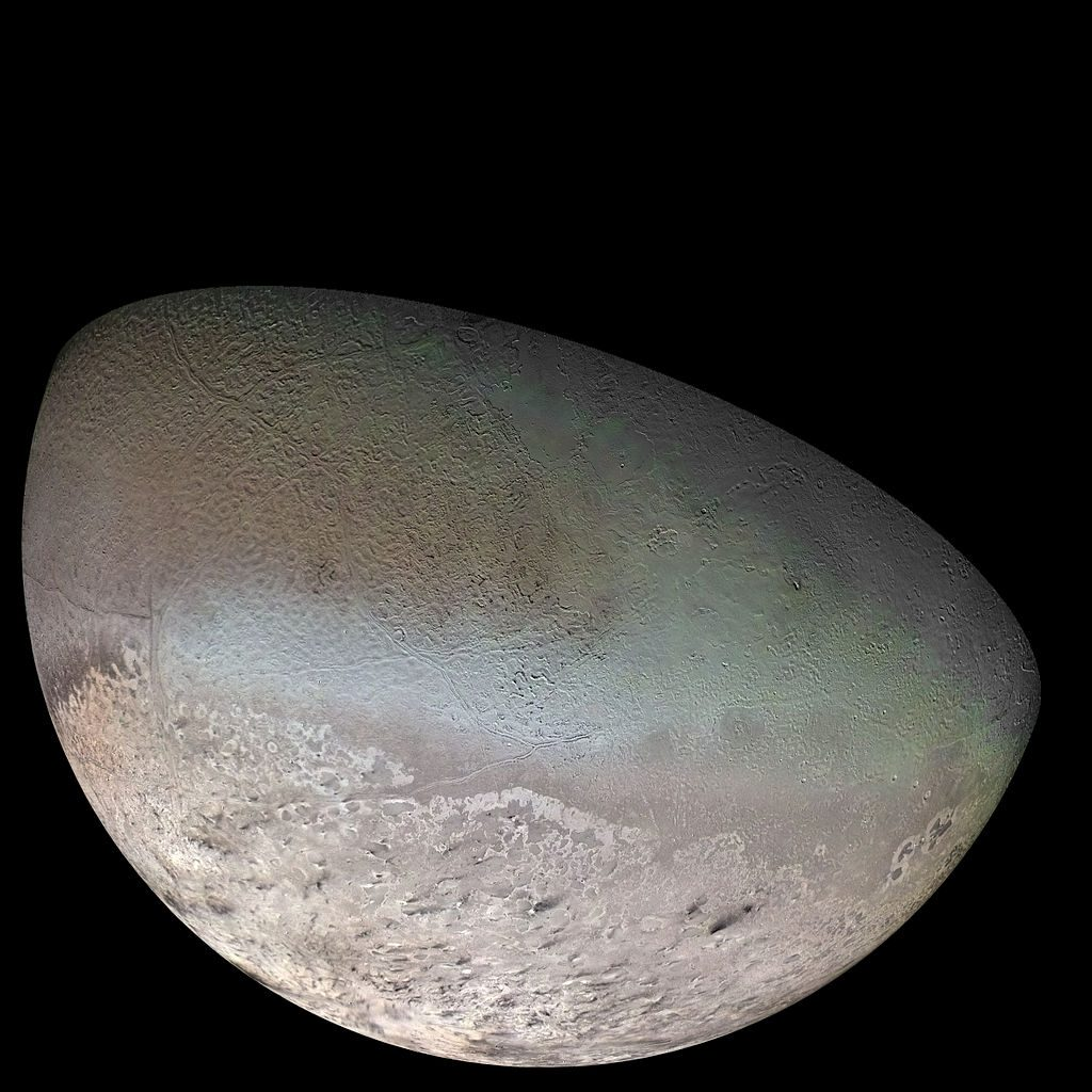 Neptune's largest moon Triton is the only large moon known to have a retrograde orbit.  This means Triton orbits opposite the direction of Neptune's axial rotation.