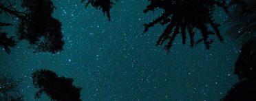 Night Sky Artwork