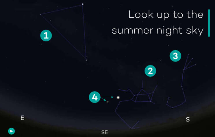 Look up to the summer night sky