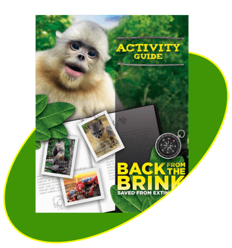 Back from the Brink - Education Guide