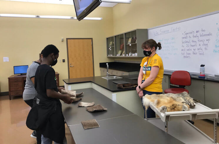 Guests examine animal pelts in the Life Science Lab